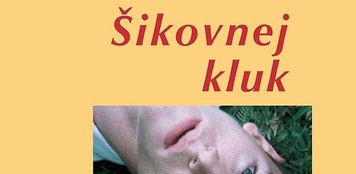 Gay kniha: Šikovnej kluk - coming-outový román