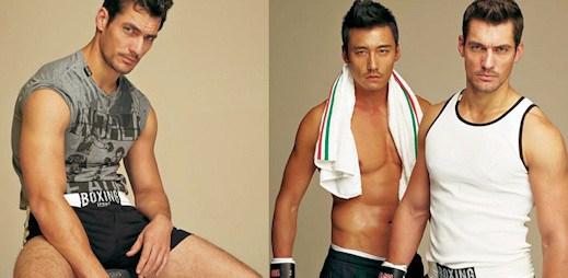 Dolce & Gabbana miluje box a WSB 2012