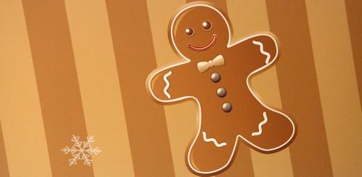 Přejeme vám krásné Vánoce a hodně sladkých perníčků!