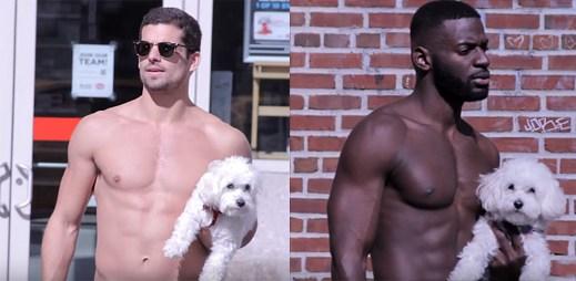 5 video epizod sexy chlapů s roztomilými štěňátky