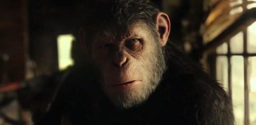 """Nový trailer k filmu """"Válka o planetu opic"""": Nejdůležitější boj o planetu Zemi"""