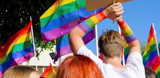 Rakušané nejsou Němci. Na homosexuální sňatky zřejmě nedojde