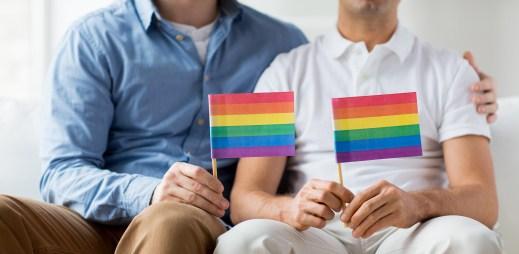Sněmovna má 82 férových poslanců! Češi jsou z hlediska homosexuálních sňatků na dobré cestě