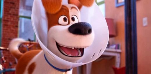"""Trailer k filmu """"Tajný život mazlíčků 2"""": Pořádná dávka emocí vícenohých miláčků"""